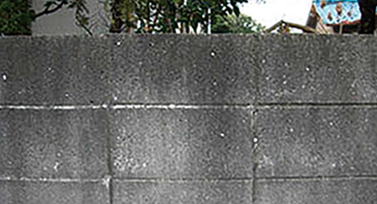施工前の堀を清掃、ナノゾーンコートを施工